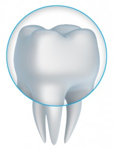 Close up image of a dental crown available near Highlands Ranch.